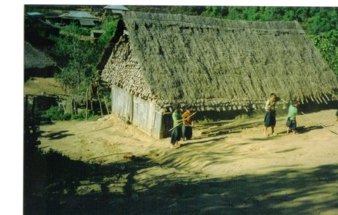 Thatched house in a village