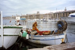 Fisherman unloading Catch in Marseilles