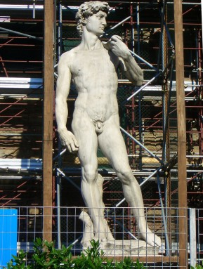 Most Famous Statue in the World - David by Michaelangela (this is a copy in Piazza della Signoria but still needs cleaning periodically)