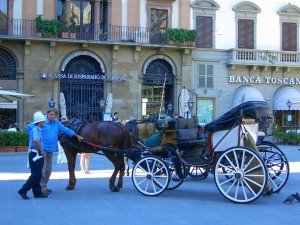 Horse and Carriage for a leisurely tour of the city