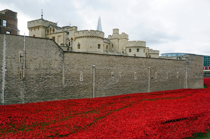 Poppies and Moat, Tower of London, 2014
