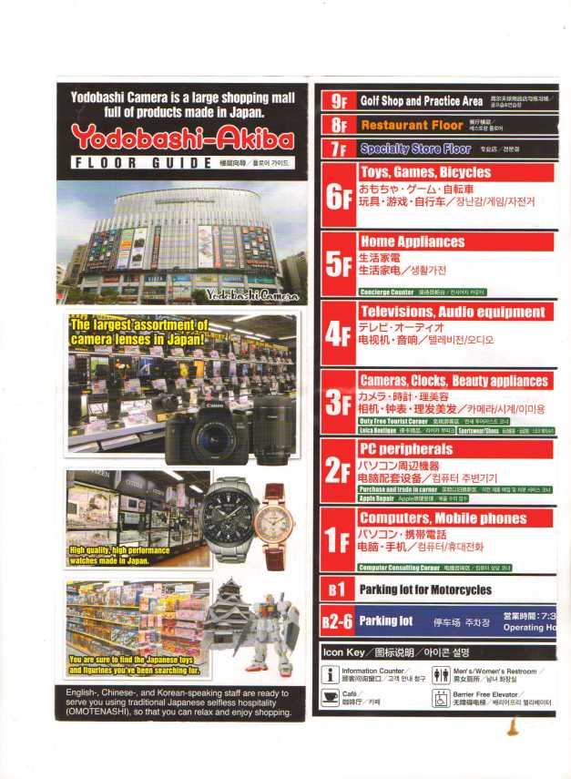 Electronic Japan