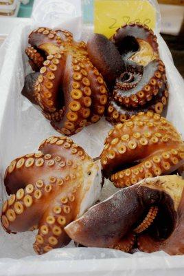 Octopus in Tokyo Fish Market