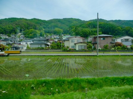 Tokyo Suburbs - Rice paddi from house to railway