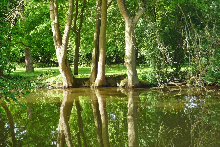 Reflections-in-the-Lake,-St