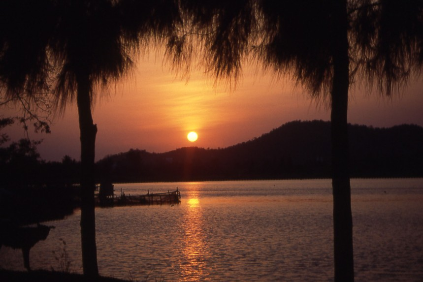 nothing-beats-a-shiny-sunset-sea-and-palm-trees