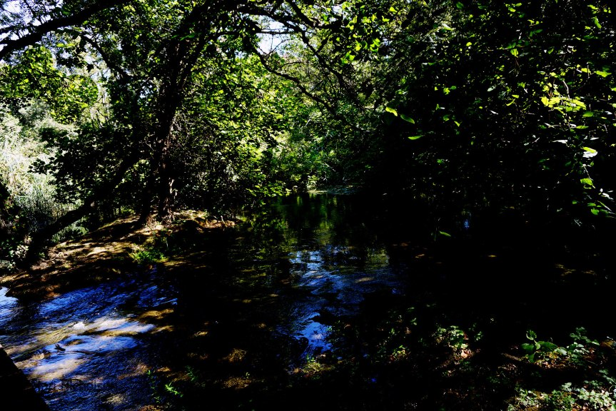 a-quiet-pool-in-the-kyka-river
