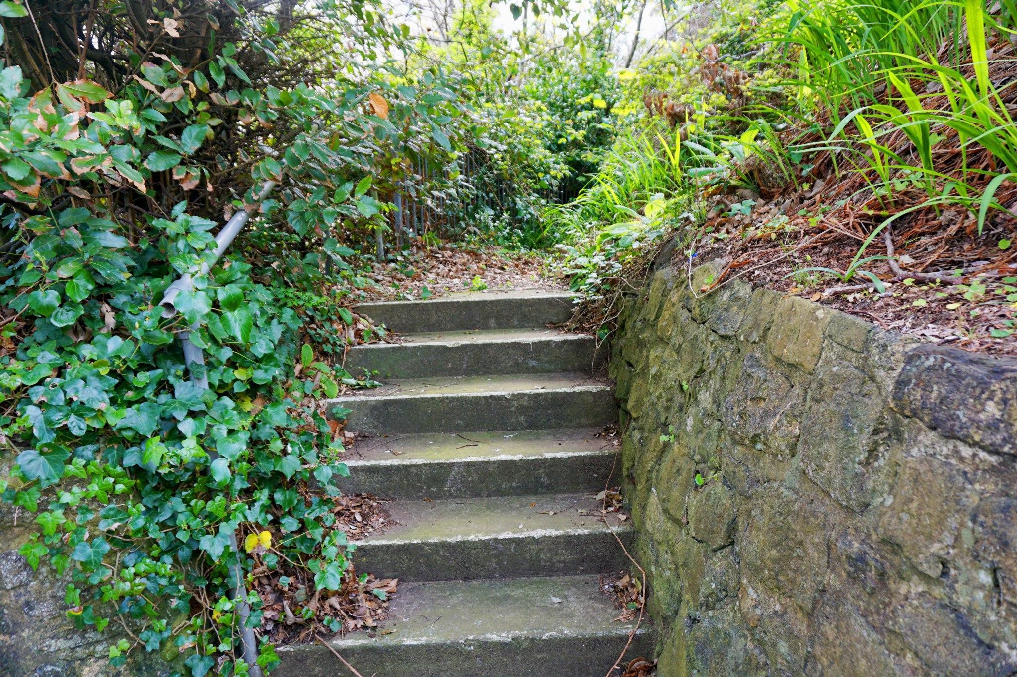 Cliff-Path,-Sandown