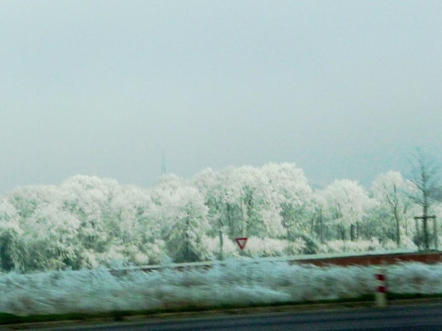 Frost-covered trees near Honfleur