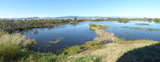 Desembocdura del Guadalhorce Natural Park. Photo Mari Nicholson