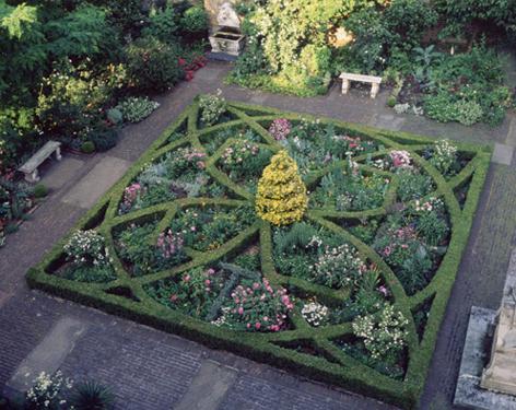 Garden aerial - small J